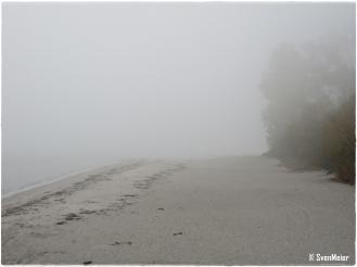 Strand im Dunst